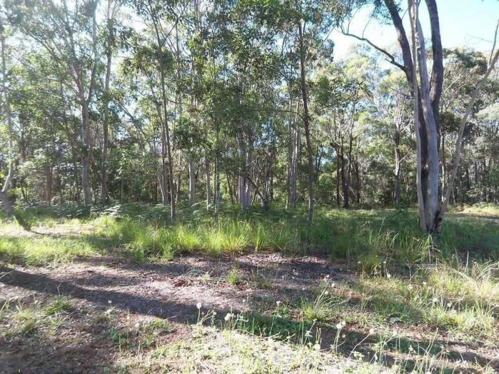 Level lot with nice Gum Trees