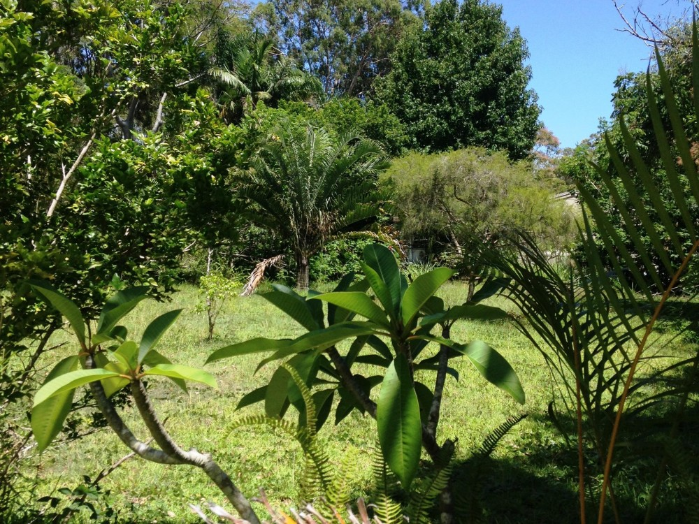 Vacant Land in a Lovely Quiet Area!