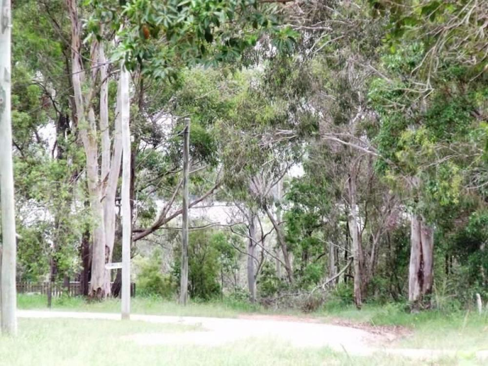 LOVELY LAUREL STREET... GLIMPSE THE BAY THROUGH THE TREES... NORTH WESTERN LOCATION FOR ONLY $45,000...
