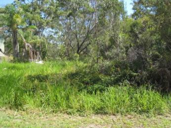 View profile: Partially cleared just off a sealed road...Lifestyle area...!!