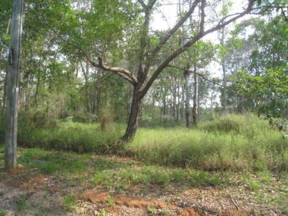 Bush block halfway down the Island...!!! Priced to sell...!!